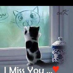 Come back!!