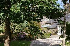 Daydream cottage 2015