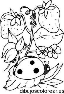 Dibujo de fresas y una tortolita