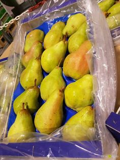 Local Agro Classifieds Продаем грушу из Испании - FRUITS - Valencia - FREE INTERNATIONAL CLASSIFIEDS
