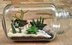 Searching the right spring decoration for your petite house? Here is a list of hand-picked DIY spring terrarium ideas to brighten your space. Small Backyard Design, Patio Design, Backyard Designs, Landscaping Design, Garden Landscaping, Pebble Mosaic, Canopy Design, Garden Landscape Design, Cactus Y Suculentas