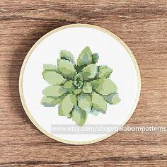 Succulent cross stitch pattern Cross stitch by galabornpatterns