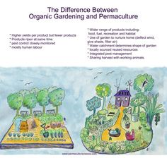 Difference between organic and permaculture gardening  http://www.permaculturevisions.com/what-is-permaculture-2/905-2/the-difference-between-organic-gardening-and-permaculture/