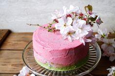 Raspberry Matcha Celebration Cake (gluten-free & vegan) - Nirvana Cakery