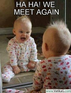 Download Haha we meet again - Funny wallpapers for mobile.
