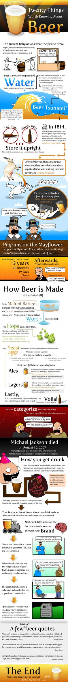 20 Things Worth Knowing About Beer and other infographics for beer