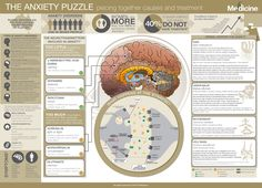 In this infographic we take a closer look at anxiety disorders as well as the clinical relevance and modes of action of some very promising herbs - kava, lemon balm, holy basil and motherwort. Mental Health And Wellbeing, Health And Wellness, Herbal Medicine, Natural Medicine, Generalized Anxiety Disorder, How To Treat Anxiety, Fight Or Flight, Neurotransmitters, Herbalism
