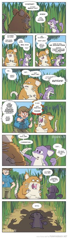 Pokemon Reunions