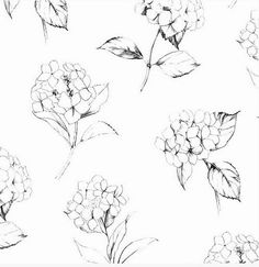 Large Black Clustered Floral Sketch Modern by WallpaperYourWorld