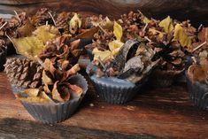12 Pinecone wax fire starters