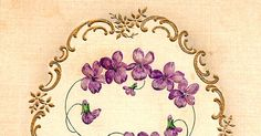 Antique Images: violets