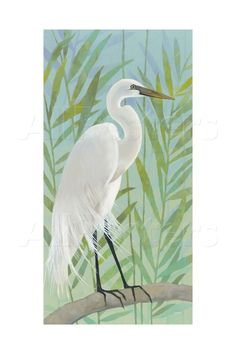 Egret by the Shore I Reprodukcja autor Kathrine Lovell w Allposters.pl