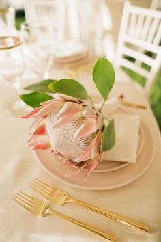 Feminine and timeless; meet our 'Blush Collection'.  Paired with a bold Protea, we love the soft, tropical look of this place setting.  {Blush Plates, Mirror Gold Flatware, Vintage Gold Rim Glassware}  Photo Credit:  @annakimphoto;  Coordinator: @islandwedmaui;  Florals: @mauiwedfloral; Place Settings: @SetMauiHawaii; Venue: #Sugarman's Estate  #thetableisSET #placesetting #tablesetting #tablescape #weddingplacesetting #weddingdesign #weddinginspiration #destinationwedding #mauiwedding…