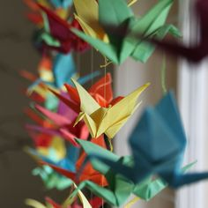 Rainbow of origami paper cranes hanging in front of a window