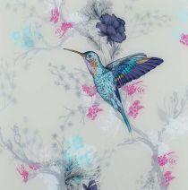 Hummingbird Bright