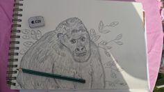 In progress: Gorilla