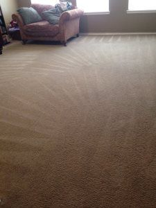 Pro #1568906 | Missile Carpet Cleaning | Katy, TX 77449