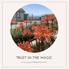 Trust in the magic, you heal yourself! Negative Emotions, Achieve Your Goals, Together We Can, Past, How Are You Feeling, Healing, Magic, Books, Past Tense