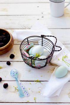 egg for vanilla custard  www.foodandcook.net