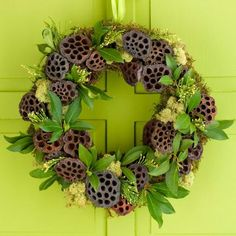 Dried lotus pods become creative holiday decorations on this inventive wreath. Hot-glue green sheet moss to a 9-inch foam wreath form, then glue about two dozen lotus pods to the wreath, clustering several pods in groups. Glue fresh bay leaves, fresh lemon leaves and arvorvitae sprigs in the moss around the pods.