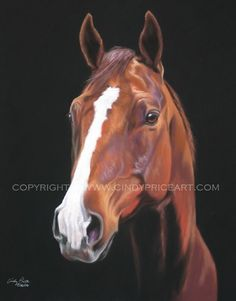 Horse Print of original pastel painting equine by cindypriceart, $27.99