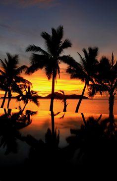 Tokoriki Island | Fiji (by Paul D'Ambra)