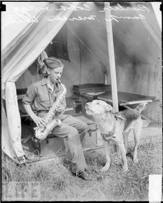 Singing along to the sax, From our gallery: Dogs Who Love Music Airedale Terrier, Terriers, War Dogs, Vintage Dog, Dog Show, Service Dogs, Working Dogs, Dog Photos, Mans Best Friend