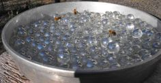 Water For Bees Without the Drowning: Set up a shallow pan filled with marbles, then add water. Bees can land to get a drink of water without risk of getting drowned. This can also be useful to divert bees from neighbors' birdbaths and swimming pools if set up closer to the hives and in the main flight path.