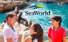 Abenity Perks: SeaWorld, Extended Stay America, Papa John's & More!  Link: https://us12.campaign-archive.com/?u=4601f99f91fd48543a4b1d7c6&id=efa95b9015