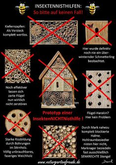 The worst nightmare for each wild bee! (poster insect nesting aid insect hotel wild bee solitary bee wildlife garden pine cones softwood drills negative example) Neudorff is part of Insect hotel -