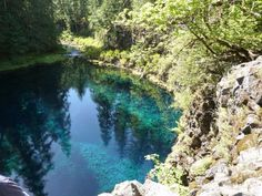 Mckenzie River Hot Springs Click To Open Image Oregon Trail Pinterest Hot Springs