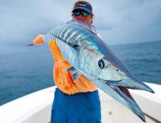 Islas Secas > Offshore Fishing