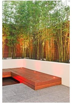 Enjoy your relaxing moment in your backyard, with these remarkable garden screening ideas. Garden screening would make your backyard to be comfortable because you'll get more privacy. Bamboo Planter, Planter Boxes, Potted Bamboo, Dwarf Bamboo, Bamboo Hedge, Bamboo In Pots, Planter Bench, Trough Planters, Concrete Planters