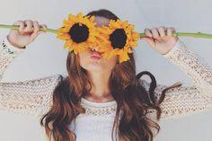 sunshine & sunflowers
