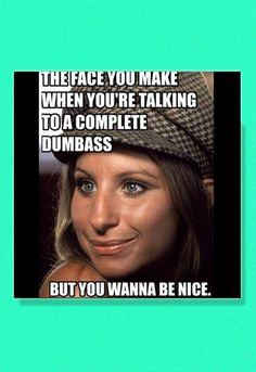 The internet's best Barbra Streisand memes, by her #1 fan