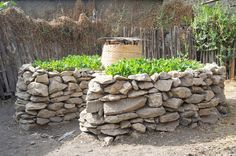 This design uses a keyhole pattern to access the center or the garden bed. One of the most innovative features of Keyhole gardens is the introduction of the