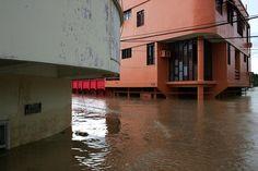 Cobija na Bolívia também é atingida pelas águas do rio Acre, -  Ensaio produzido para agência Reuters/Odair Leal