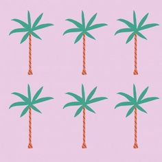 palm tree love
