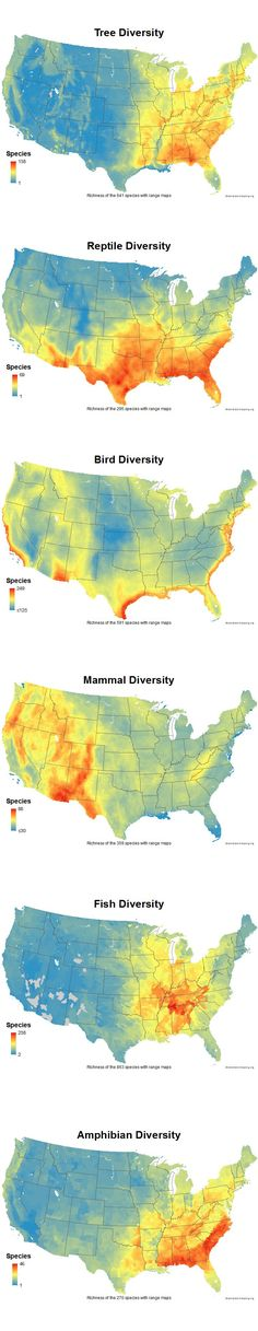 Raised Relief Map Of The United States United States Pinterest - Amphibian loss us map