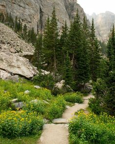 Sky Pond Trail, Rocky Mountain National Park, Colorado