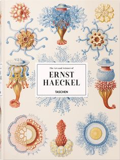 Booktopia has Ernst Haeckel by Ernst Haeckel. Buy a discounted Hardcover of Ernst Haeckel online from Australia's leading online bookstore. Science Illustration, Botanical Illustration, Nature Illustrations, Ernst Haeckel Art, Illustration Inspiration, Karl Blossfeldt, Fauna Marina, Natural Form Art, Theory Of Evolution