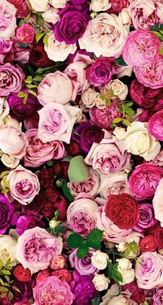 Me  encanta  este fondo de flores