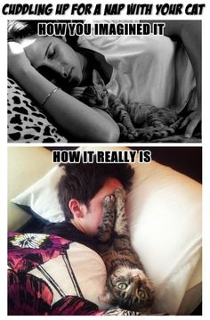 Haha! Funny. Although Nina actually DOES sleep with me like the top picture, at night. We nuggol :D
