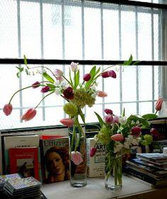 hortensia, pois de senteur, tulipe, viburnum