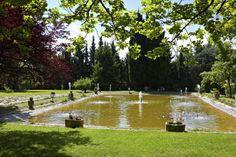 Le bassin à chaque saison Golf Courses, Plunge Pool, Park, Flowers