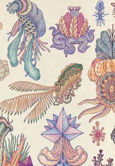 Illustrator: Katie Scott Botanic, detailed, fascinating, figurative illustrations