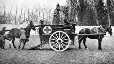 horses in battles | Blue Cross horse ambulance at work in France during the World War I.