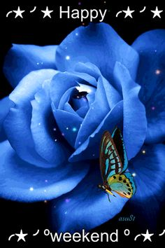 Animation Blue rose with a butterfly that flaps its wings, the author SIFCO blue rose with a butterfly that flaps its wings, the author Beautiful Butterflies, Beautiful Roses, Blue Flowers, Beautiful Flowers, Gif Animé, Animated Gif, Gif Rose, Rosas Gif, Butterfly Gif