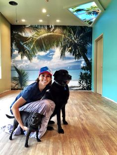 Throwing it back to the creation of the new Beach Braces office we all Love today! Did anyone take their dog to work today? Facebook Timeline, Work Today, Adult Children, Working Dogs, Braces, Happy Friday, Manhattan, Suspenders, Dental Braces