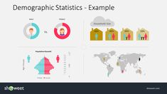 Demographic Infographic Example Slide for PowerPoint